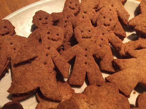 Gingercookie 00014